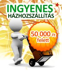 121006-ingyenesszallitas